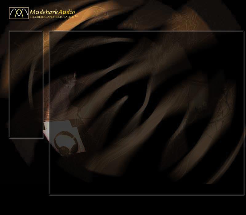 MUDSHARK AUDIO - www mudsharkaudio com